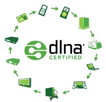 DNLA Certified logo